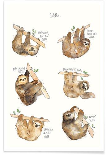 """faultier poster JUNIQE® Poster 20x30cm Kinderzimmer & Kunst für Kinder Faultiere - Design """"Sloths"""" (Format: Hoch) - Bilder, Kunstdrucke & Prints von unabhängigen Künstlern entworfen von Amy Hamilton"""