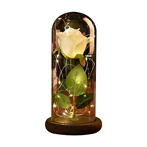 Etopfashion Beauty and The Beast Red Rose Scenery