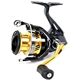 Shimano Trolling Reels Review and Comparison