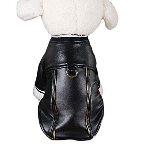 - Black Cat Dog Kostüm
