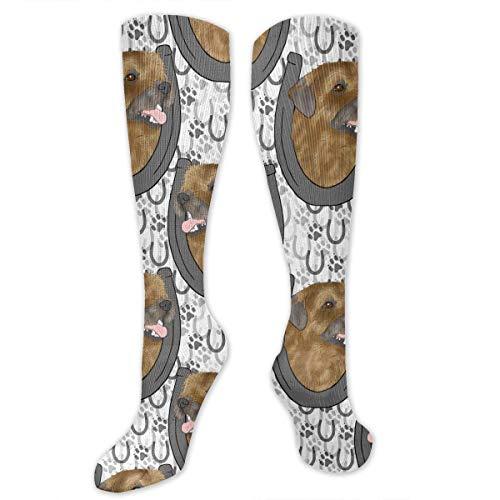 Terrier Kostüm Border - Gped Kniestrümpfe,Socken, Border Terrier Horseshoe Portraits Women's Girls Knee High Socks Sports Stockings Football Long Socks