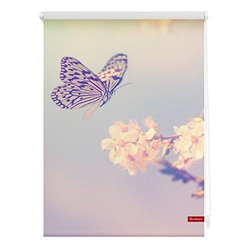 Lichtblick KRT.120.150.356 Rollo Klemmfix, ohne Bohren, blickdicht, Schmetterling - Rosa Rot 120 x 150 cm (B x L)