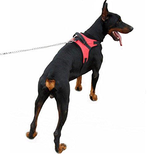 Anti-Zug-Hundegeschirr, weich gepolstert, zum Trainieren von Leinenführigkeit, für große Hunde