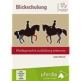 Blickschulung - pferdegerechte Ausbildung erkennen