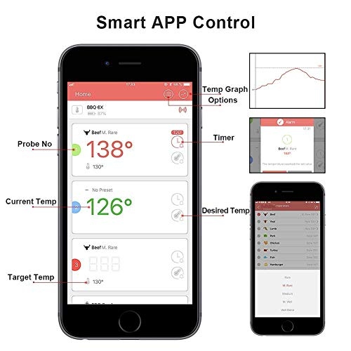 Zoom IMG-1 bbq termometro controllato da app