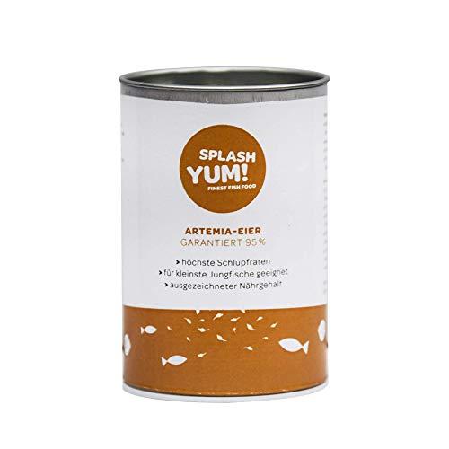 SplashYum! Uova di Artemia 95% Tasso di cova (50g)