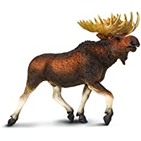 Safari Ltd Wildlife Wonders Moose by Safari