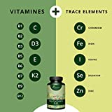 ❤️ Vegavero Multi-Vitamin Mineralien Komplex Vitamin A C D3 E Zink Selen ❤️ | hochdosiert | Vegan | Nahrungsergänzungsmittel für Immunsystem ▪ Stoffwechsel ▪ Haut ▪ Haar ▪ Sehkraft, 4-Monatsvorrat - 4