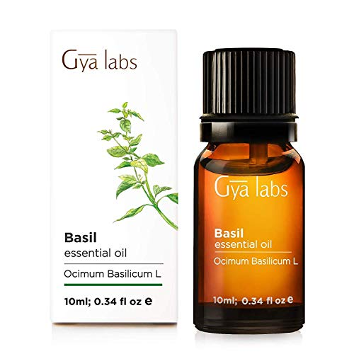 Basil Essential Oil for Hair Growth (10ml) - 100% Pure Therapeutic Grade - Gya Labs