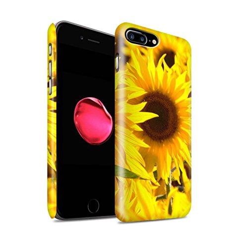 STUFF4 Matte Snap-On Hülle / Case für Apple iPhone 7 Plus / Zarte Rose Muster / Blumengarten Blumen Kollektion Sonnenblumen