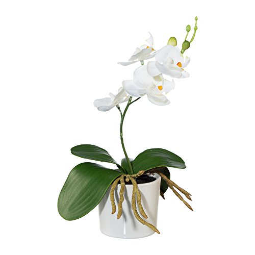 Kunstblume MINIPHALENOPSIS (Orchidee) im KERAMIKTOPF. Phalenopsis ca 20 cm. Weiß, WEISS