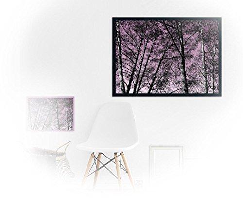 Forrest violet_ Fine Art Fotoabzug 70 x 50 cm – ungerahmt - Kunst, Poster, Plakat, Artwork, Fotografie, Grafik, Einrichtung, Interieur, Geschenk, SKU 103018-velvet