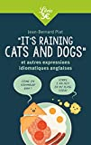 It's raining cats and dogs - Et autres expressions idiomatiques anglaises