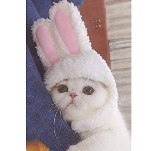 Cuteboom Kätzchen-Kostüm, Hut, Kätzchen, Hase, kleine Katze, Osterkostüm, Halloween, Geburtstagskappe, One Size, weiß