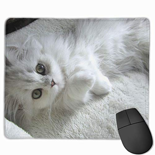 Preisvergleich Produktbild Mouse Pad Cute Cat Rectangle Rubber Mousepad 11.81 X 9.84 Inch Gaming Mouse Pad with Black Lock Edge