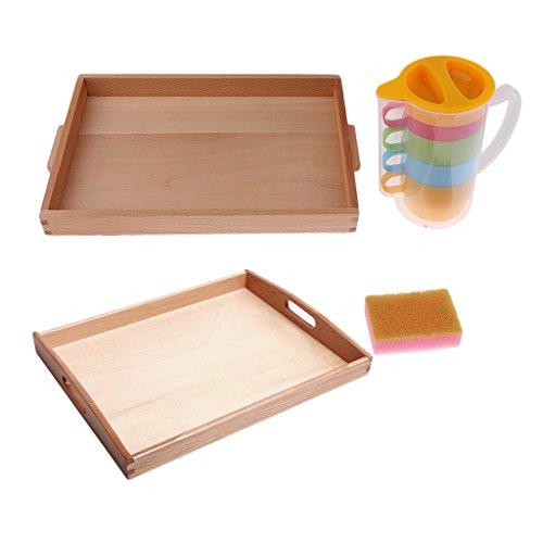 PETSOLA Montessori Kit Vertido Básico Lanzador + Copas + Esponja + Bandeja De Juguete De Regalo para Niños