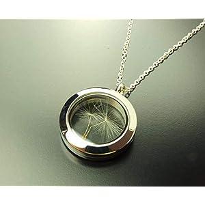 Echte Pusteblume im Glas Medaillon Kette silbern Juvelato