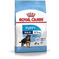 ROYAL CANIN Alimento para Perros Junior Maxi - 15 kg