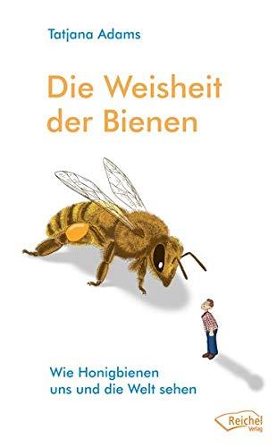 Die Weisheit der Bienen: Wie Honigbienen uns und die Welt sehen