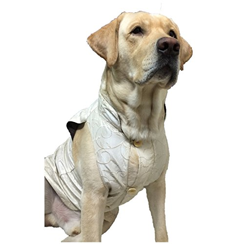 Wagging Fashion White Nehru Jacket For Dogs (6)