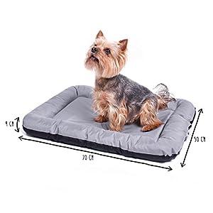 ANIMALY Hundebett wasserdicht und Kratzfest, Hundekissen geeignet für den Außeneinsatz, waschbare Anti-Rutsch Hundedecke, auch als z.B. Katzenbett geeignet, Hundematte grau M