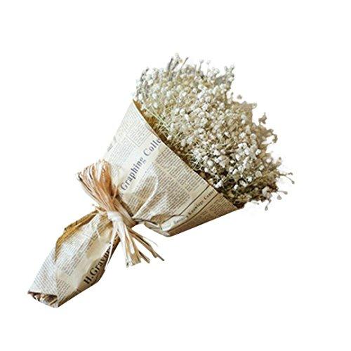 Coloré(TM) Souffle de fleurs séchées Natural Gypsophila Baby Home Fleur séchée Sky Star Star. Décor Floral le Bouquet de Fleurs Fête de Mariage (Chaud rose) (Blanc)