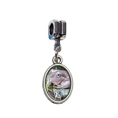 Dumpy Baum Frosch Italienisches europäischen Euro-Stil Armband Charm Bead–für Pandora, Biagi, Troll, Chamilla, andere (Baum Frosch Kostüme)