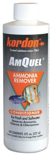 Kordon # 31248 Amquel Ammonia Control and detoxifies Chloramine for  Aquarium, 8 Ounce by Kordon LLC