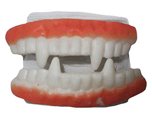 n Spielzeug Fake Vampir Zähne Fang Zubehör für Kinder Erwachsene Gr. One size, mehrfarbig (Vampir Kostüme Für Teenager-mädchen)