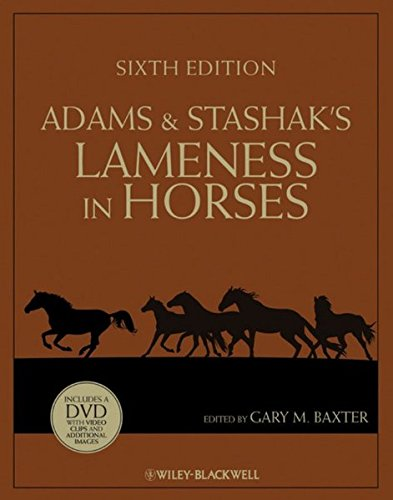 Show Horse Western (Adams and Stashak's Lameness in Horses)