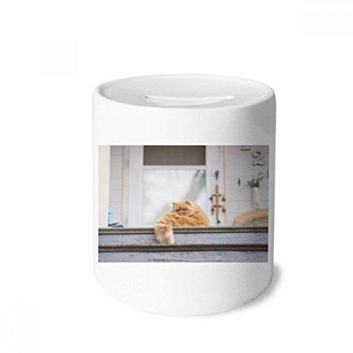 DIYthinker Tierfett Garfield-Katzen-Fotografie-Geld-Kasten Sparkassen Keramik Münzfach 3.5 Zoll in Height, 3.1 Zoll in Duruchmesser Mehrfarbig -