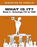What Is It Book 4: Drawings 751 to 1000