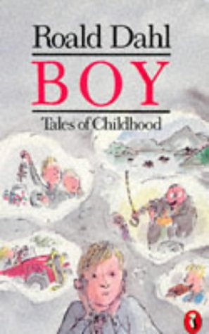 Boy: Tales of Childhood (Puffin Story Books)