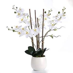 WEFLOWERS Arreglos de Flores Artificiales de orquídeas de Seda Blancas con jarrón, Toque realístico Real, decoración Central y elección de Regalo