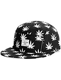 Casquette 5 panel Cayler and Sons Budz N stripes - Mixte