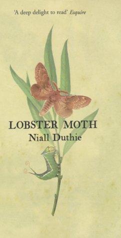 Lobster Moth Pb