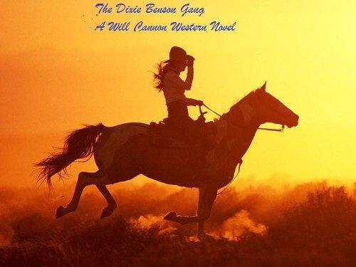 The Dixie Benson Gang  A Will Cannon Western Adventure Novel por Larry Hill Gratis