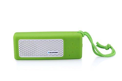 Blaupunkt BTS10GR Tragbar Bluetooth Lautsprecher Sprecher mit Radio, MP3-Player micro SD (32GB), Akku 4500mAh, Powerbank, LED Taschenlampe