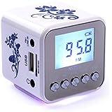 Foxnovo TT-032 a Mini haut-parleur MP3 Player avec Radio FM TF carte Slot USB cadenceur AUX-IN pour téléphone portablePC