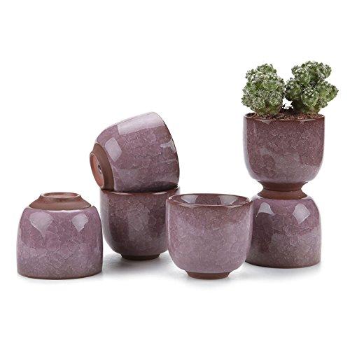 T4U 6,3cm Keramik Ice Crack Zisha erhöhte Serial Sukkulente Topf/Kaktus Topf Blumentopf/Behälter/Pflanzgefäß Eltern, keramik, violett, XS