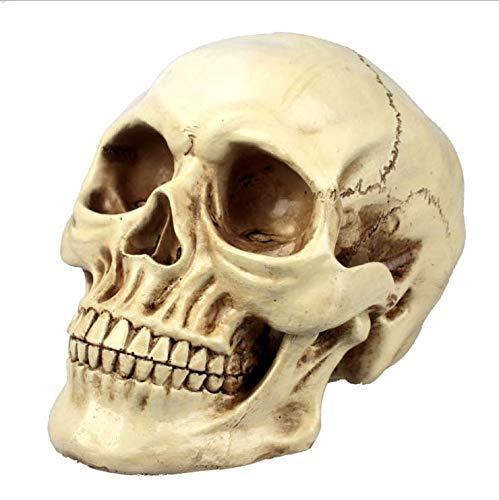 XINXIN Halloween Resin Craft Schädel Ornamente Simulation 1:1 Medizinische Menschliche Schädel Anatomie Muster Kreative Requisiten