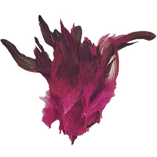 ERGEOB Hahn Feder - Ideen für die Kostüme, Hüte, Home Dekor Circa 100 stück 12-18cm rosa