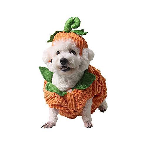 Cathy02Marshall Haustier Kleidung Halloween Kürbis Kostüm Fleece Mantel Jacken Kleidung für Hunde Katzen Welpen Chihuahua Dressing up Party Halloween Weihnachten Ostern Festival Aktivität Apparel