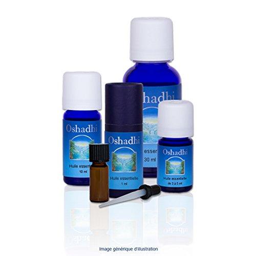 Huile essentielle : Menthe pouliot - Mentha pulegium - 5 ml