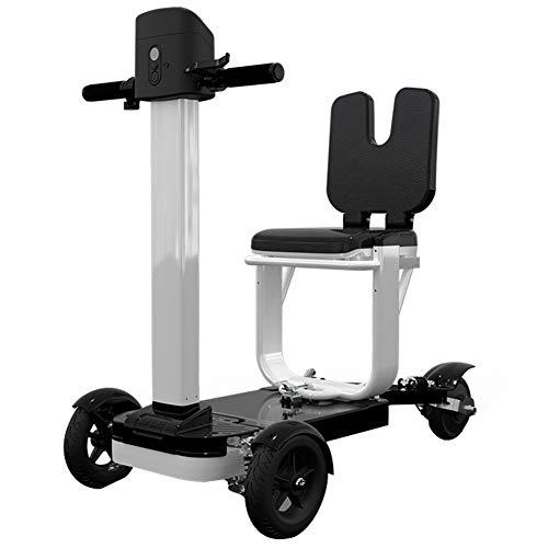 Il Mini Triciclo Elettrico Pieghevole per Adulti Bici Elettrica a 3 Ruote per Biciclette Potente Scooter per Il Tempo Libero 36V può Durare per 30 Km Unisex