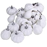 Package of 16 Mini Assorted Harvest White Artificial Pumpkin and Gourds Fall Wedding Thanksgiving Halloween Seasonal Holiday Tabletop Decoration Centerpiece