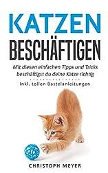 Katzen beschäftigen: Mit diesen einfachen Tipps und Tricks beschäftigst du deine Katze richtig - Inkl. tollen Bastelanleitungen (Katzen trainieren, Band 4)