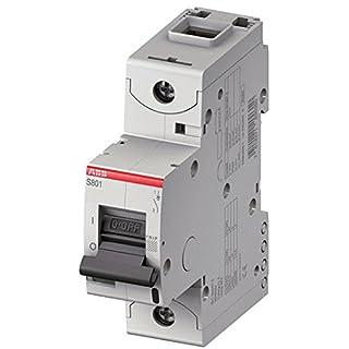 abb-entrelec S800°C-Automatic Switch s801°C-k1001Polo Curve K 100A