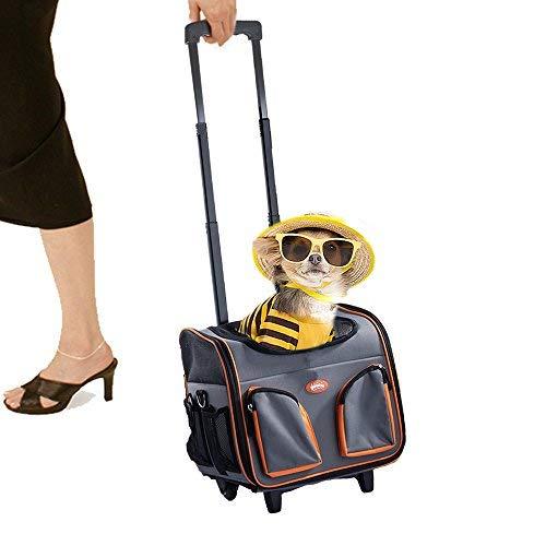 Pawise Pet Trolley Bag Rolling Pet Travel Carrier Pet Carrier mit Rollen, l, Orange (Anzug-tasche Rolling)