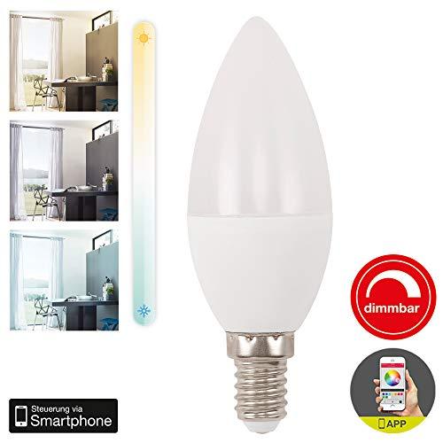 Briloner Leuchten – Wifi LED Lampe, dimmbar und Timerfunktion via APP, Amazon Echo, Alexa und Google Home kompatibel, E14 4.5W, 350 lm, Farbtemperatur: warm weiß bis kalt weiß (2700-6500 Kelvin)